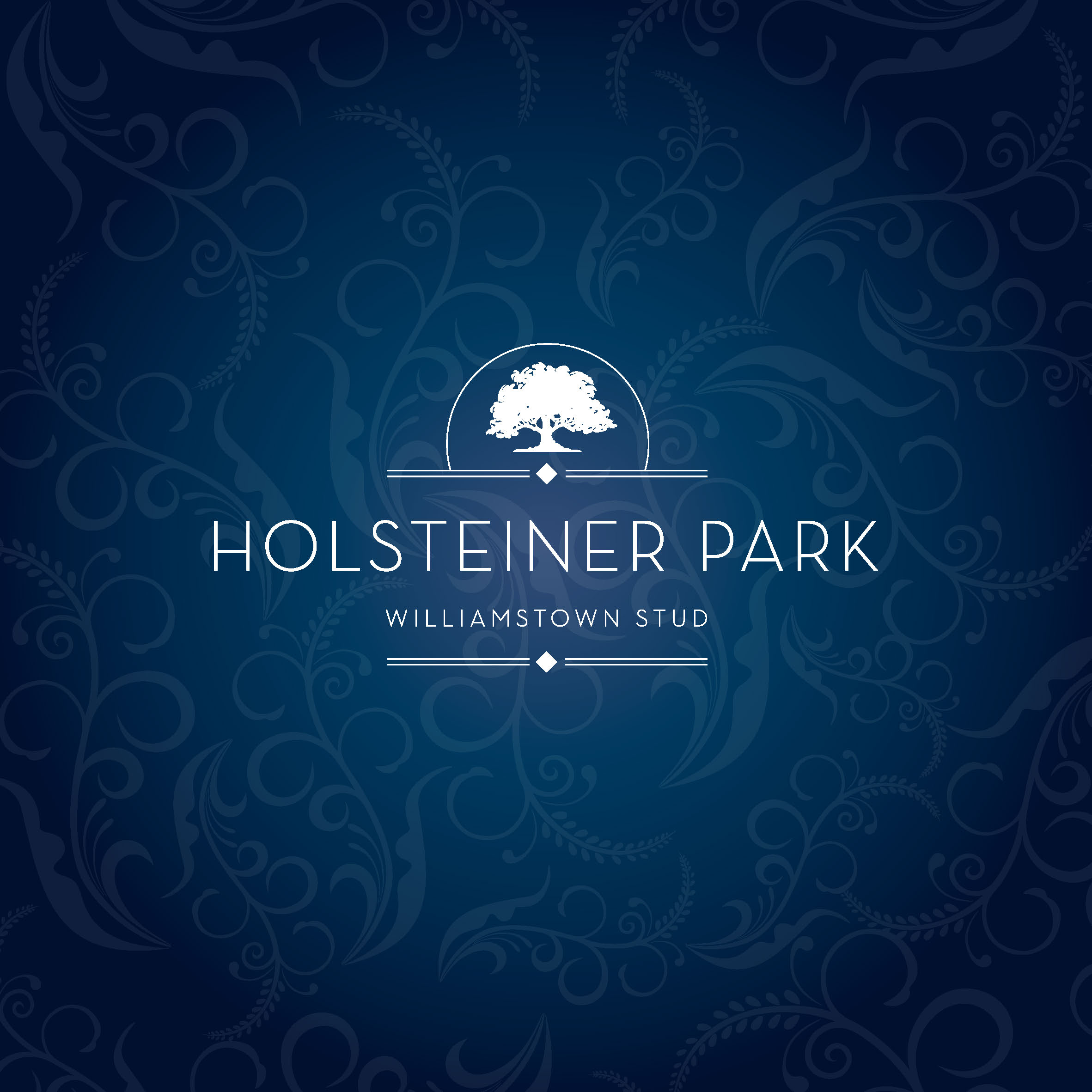 Pages from Holsteiner Brochure